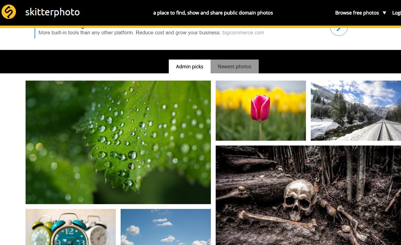 Skitterphoto Free Image Library